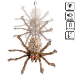 Araña pelo marrón-negro 60 x 45 x 10 cm