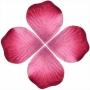 Bolsas de Pétalos de Rosas 0.47 €
