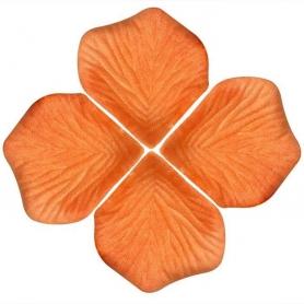 Pétalos Naranjas  Pétalos y cofetis para Bodas Decoración de