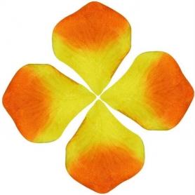 Pétalos de Colores  Pétalos y cofetis para Bodas Decoración de