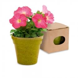 Macetas Biodegradables Color: rojo, verde, natural Originales y