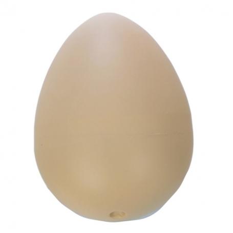 Surprise Dinosaur Egg